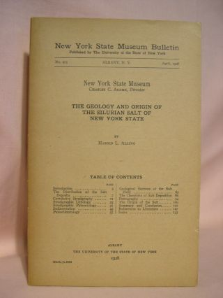 THE GEOLOGY AND ORIGIN OF THE SILURIAN SALT OF NEW YORK STATE. NEW YORK STATE MUSEUM BULLETIN NO....